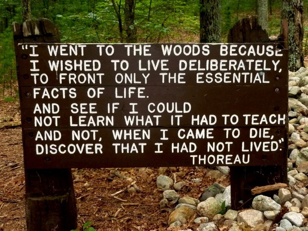 A Quote By Henry David Thoreau Who Lived At Walden Pond For